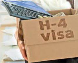 अमेरिका : 70 हजार भारतीय की नौकरी खतरे में, H-4 वीजा हो सकता है रद्द