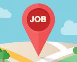 भारतीय कंपनियां खूब करेंगी भर्ती, मिलेंगे नौकरी के अवसर, मैनपॉवर का खुलासा